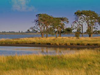 Nachhaltigkeit für Generationengerechtigkeit bei Umwelt- und Naturbedingungen